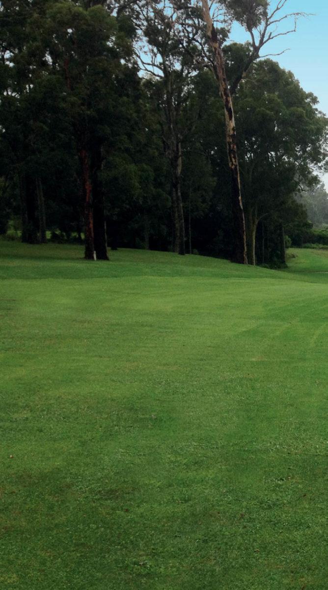 Shortland Waters 1 - Shortland Waters Golf Club